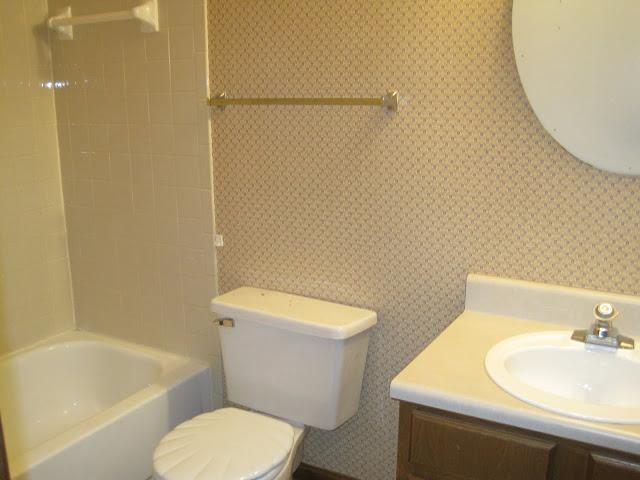 Picture Progress: The Bathroom