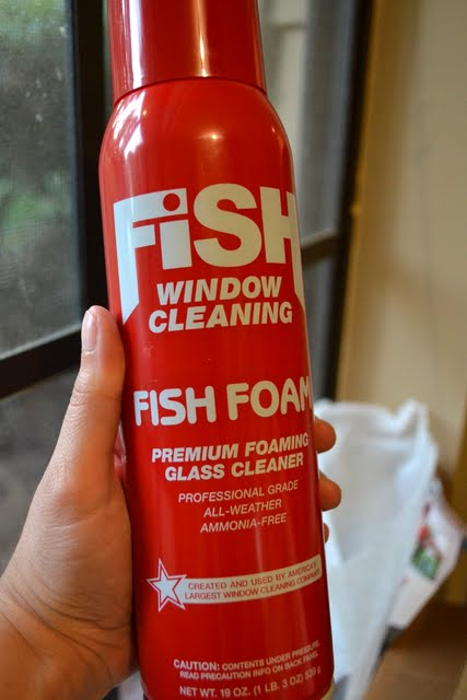 Fish Foam™ Window Cleaner Review + Giveaway