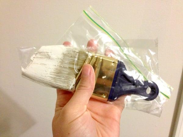 wet paintbrush plastic bag