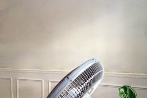 fan on oil primer in dining room