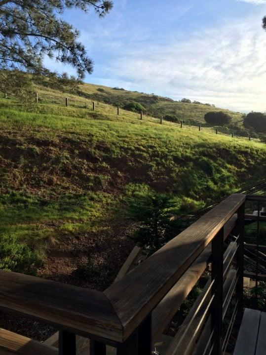 San Francisco hillside