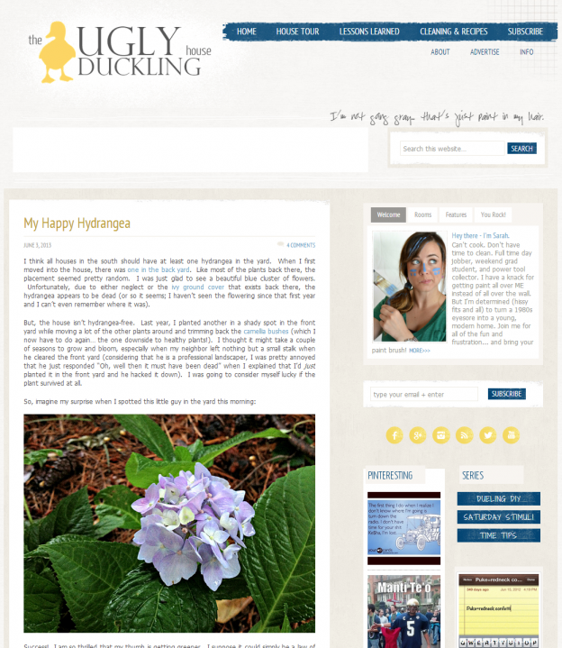 The Ugly Duckling House blog old layout