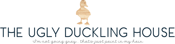 THE UGLY DUCKLING HOUSE