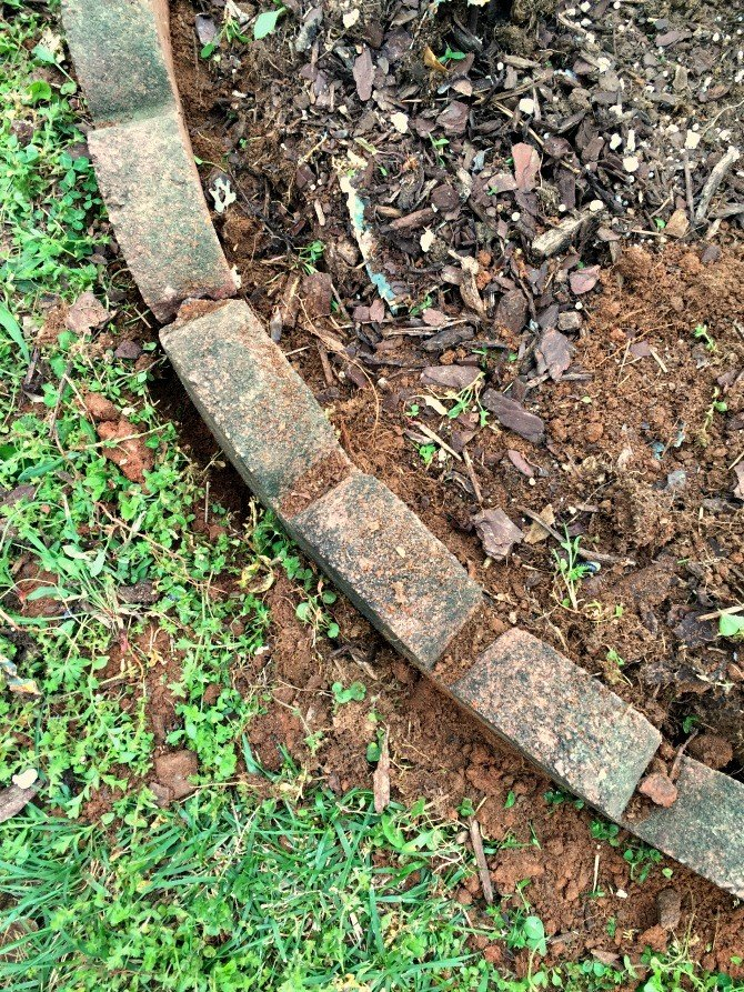 compacting soil around edger stones
