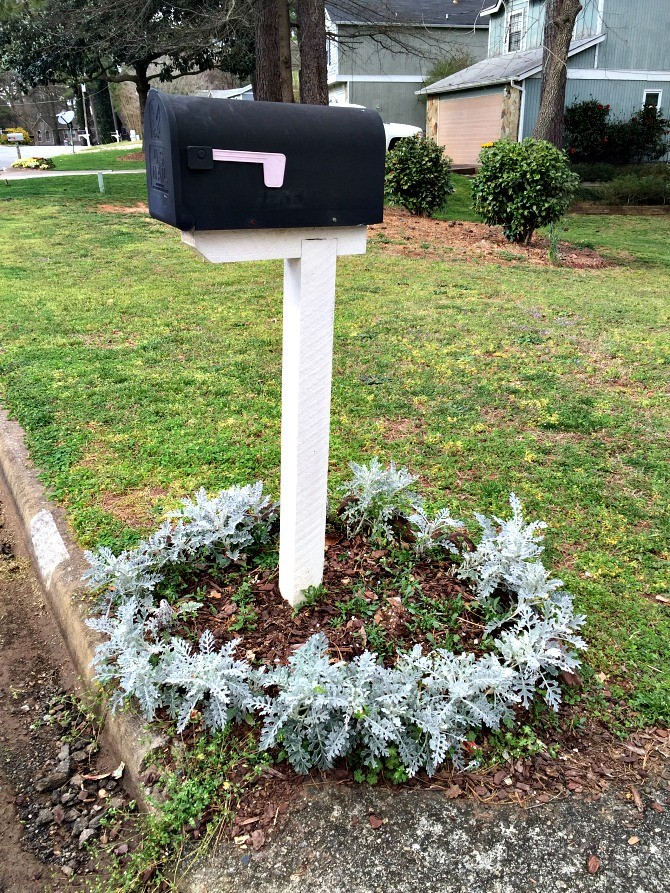How To Edge A Mailbox Garden Bed Adding Creeping Phlox Ugly Duckling House