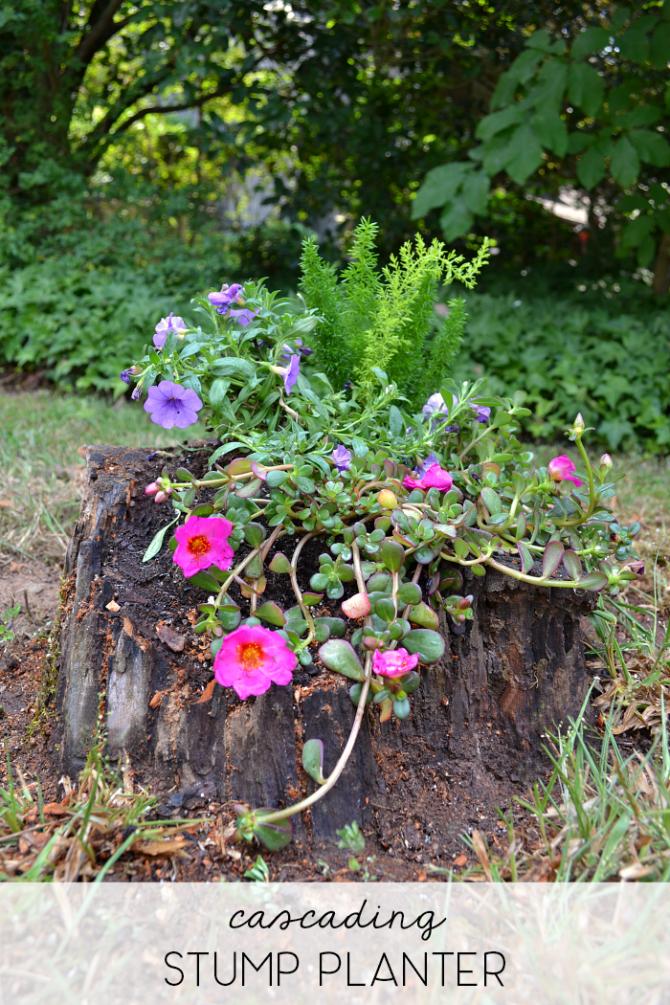 cascading stump planter