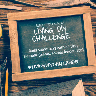 Next Week: Living DIY Challenge!