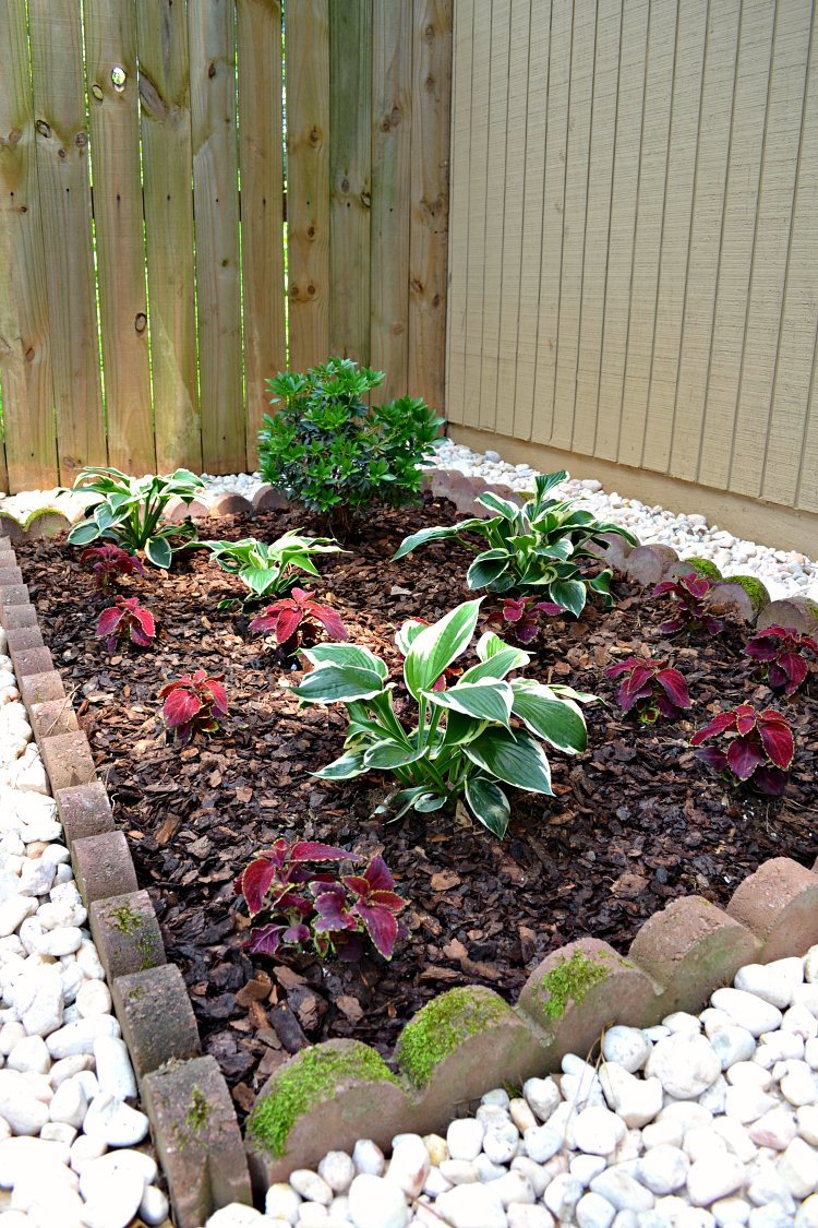Landscaping Around the A/C Unit (almost done!)