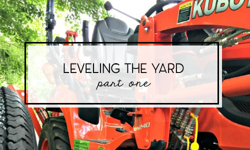 leveling grading sinkhole backyard part 1