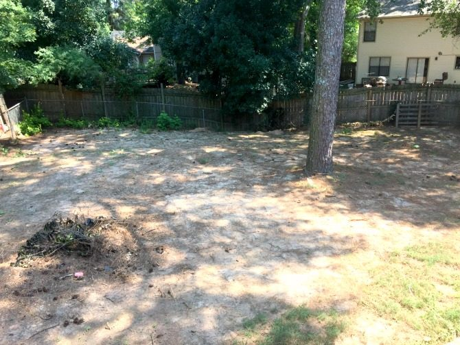 backyard-overhaul-level-yard