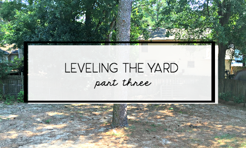 leveling-grading-sinkhole-backyard-part-3