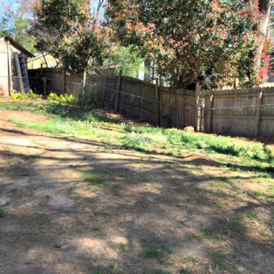Tips for Seeding the Backyard