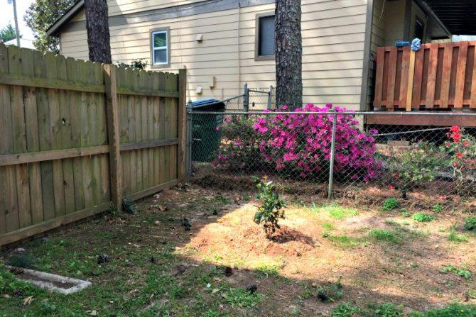 corner garden before