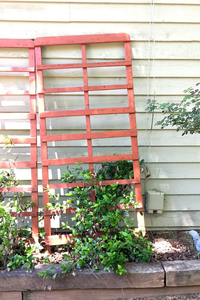 repurposed trellis made from bed frame parts