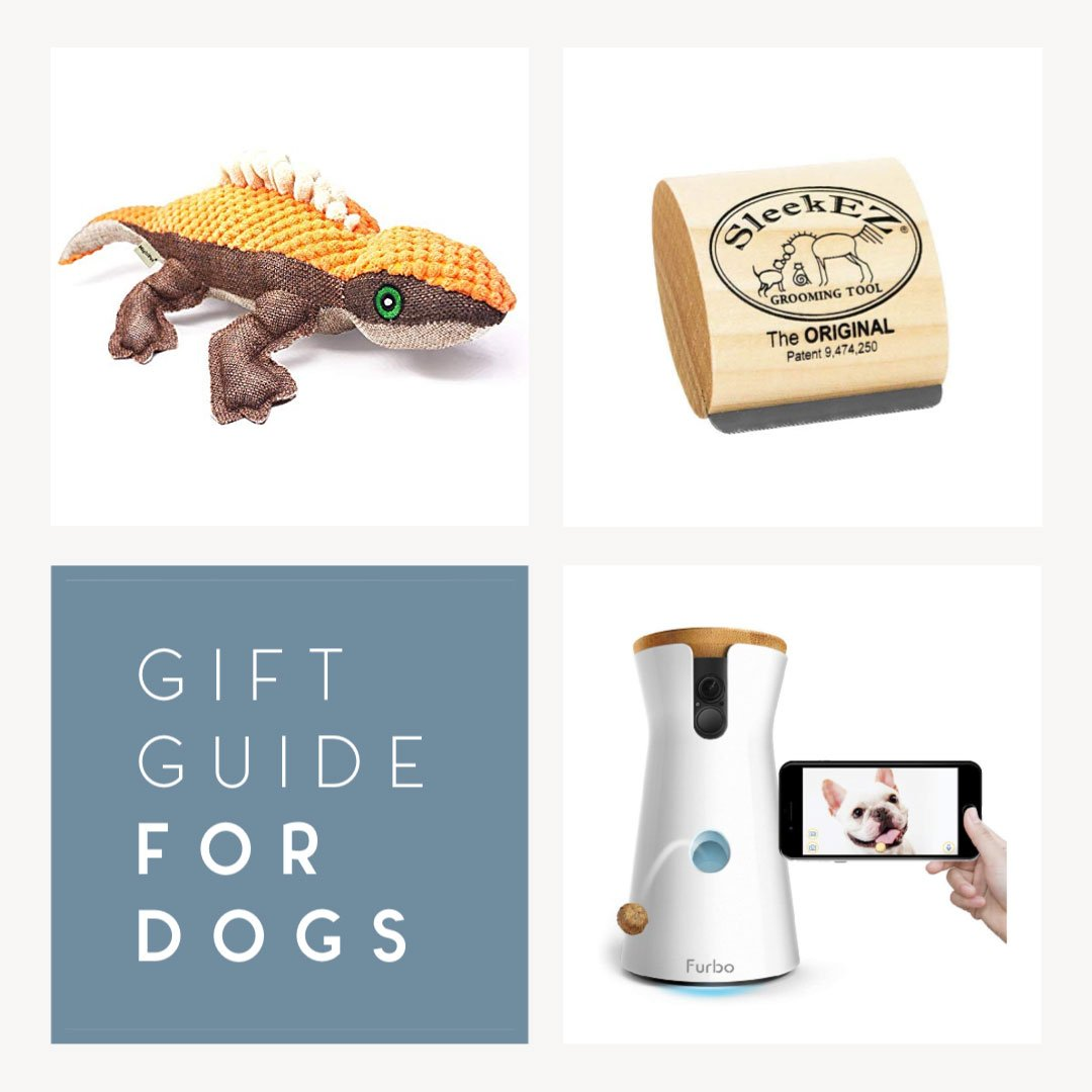 11 Products for Busy Dog Owners That Make Life a LOT Easier