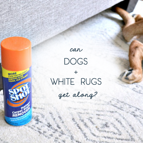 A Noticeable Shortcut to Keeping My White Rug Clean