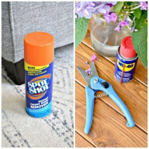 wd40 and spot shot giveaway
