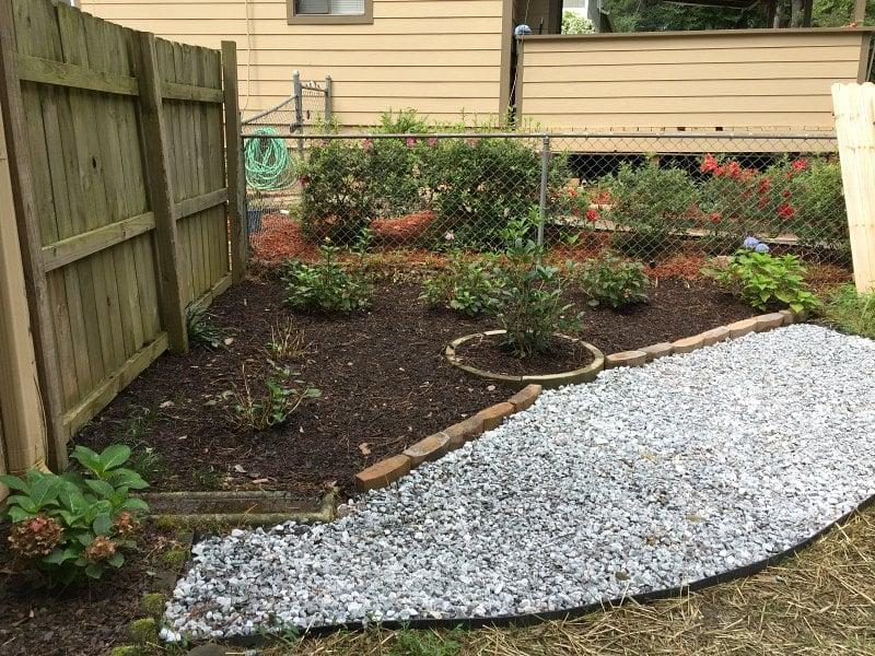 hydrangea corner garden side angle