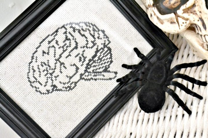 anatomical brain cross stitch