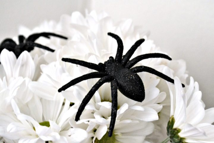 spiders on flower bouquet