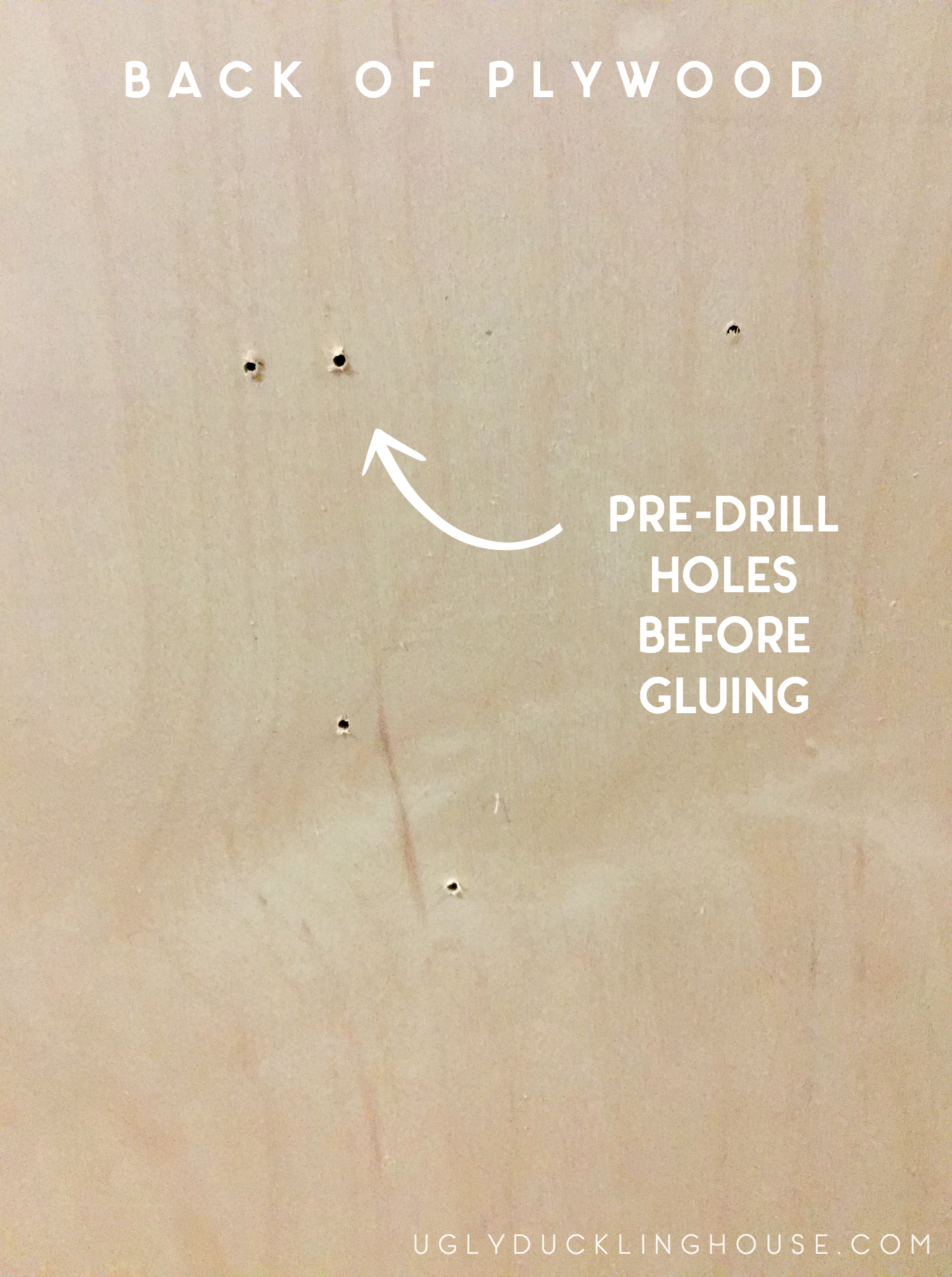 pre-drill screw holes before gluing to keep the wood from splitting