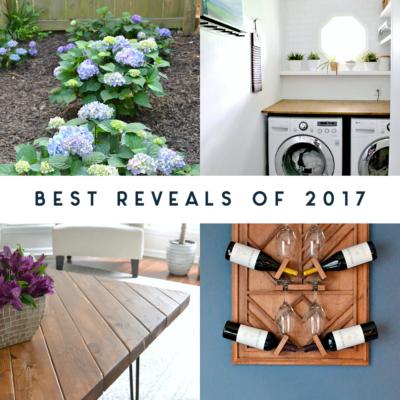 Best Reveals of 2017