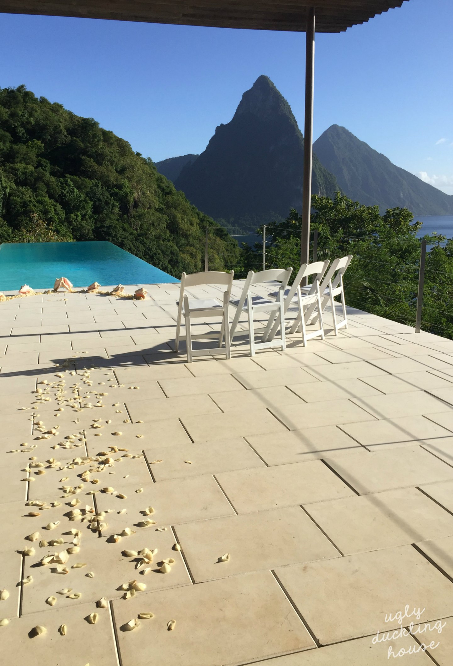 vow renewal St Lucia - ugly duckling house - petals and view