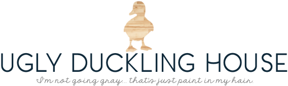 ugly duckling house - blog logo