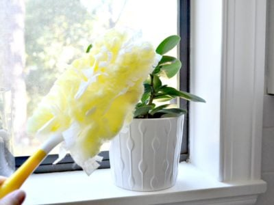I use Swiffer duster on smaller plants too - it sweeps down each leaf quickly and has less maintenance