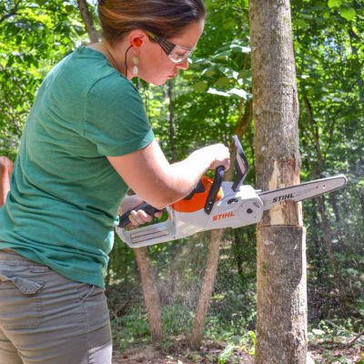 If You Give a Gal a Chainsaw… (How to Cut Down a Small Tree)
