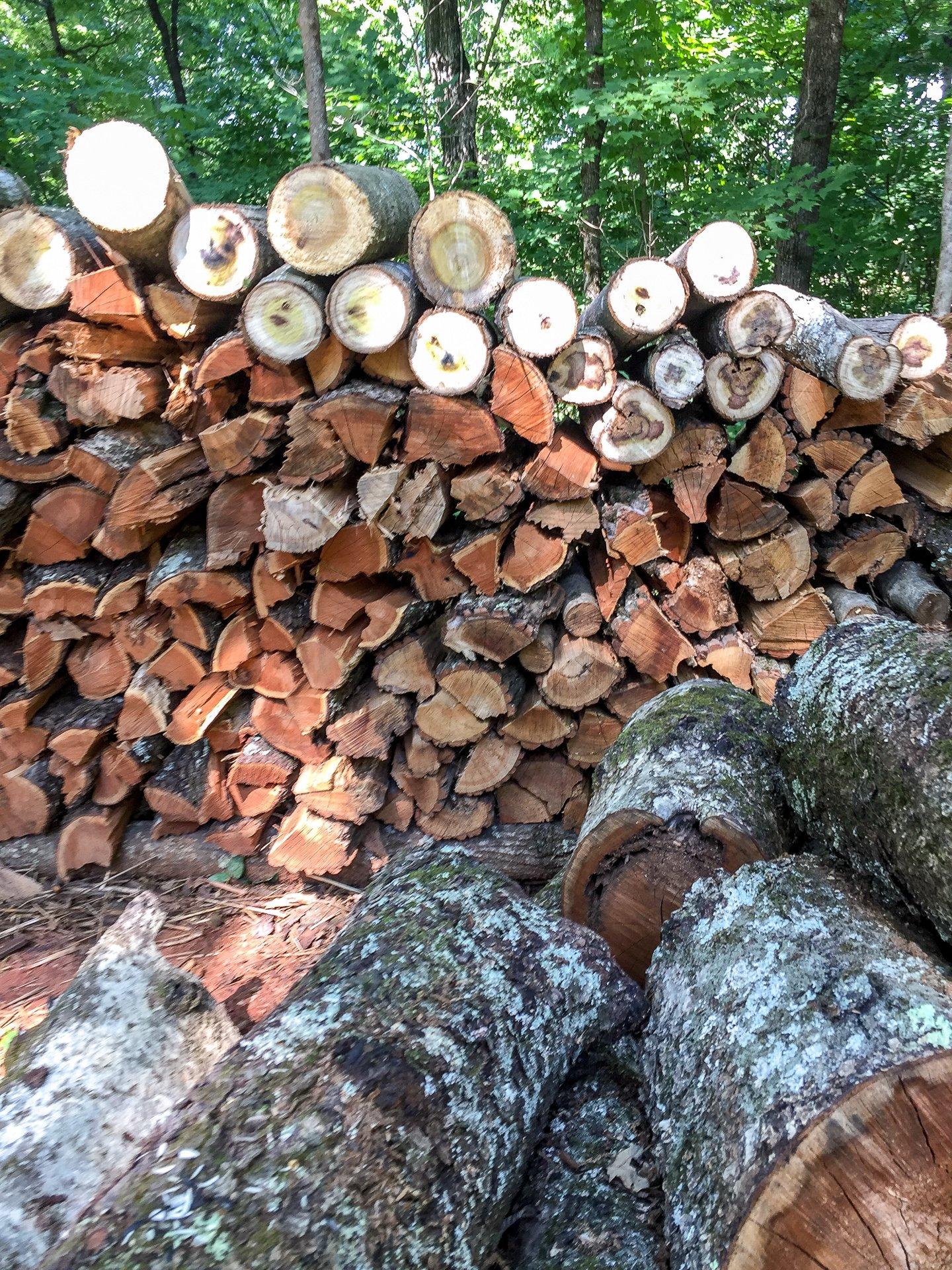 Giant woodpile in TN