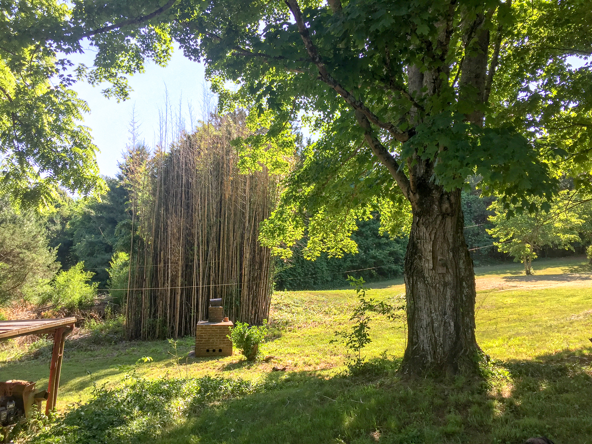 Huge tower of bamboo used for lots of projects
