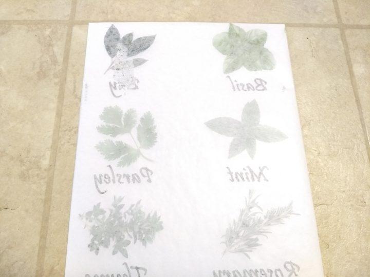 Kitchen Herb Signs