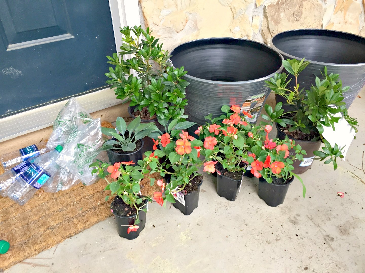new planters on front porch