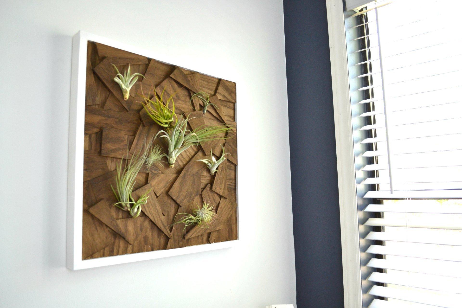 scrap wood diy air plant wall art