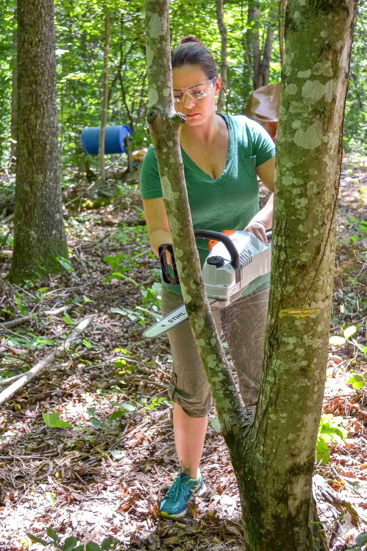 Me trying out my first cut on a tree with STIHL chainsaw