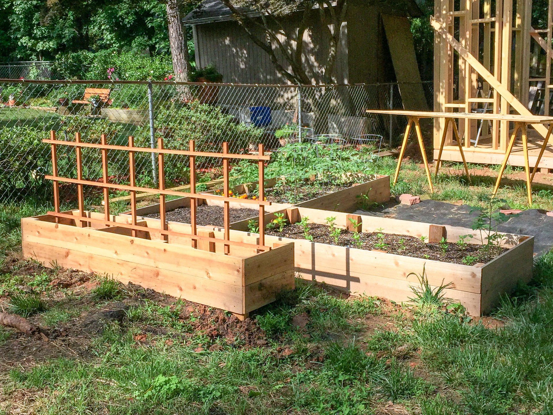 New garden bed area with cucumber trellis - shed frame in the background