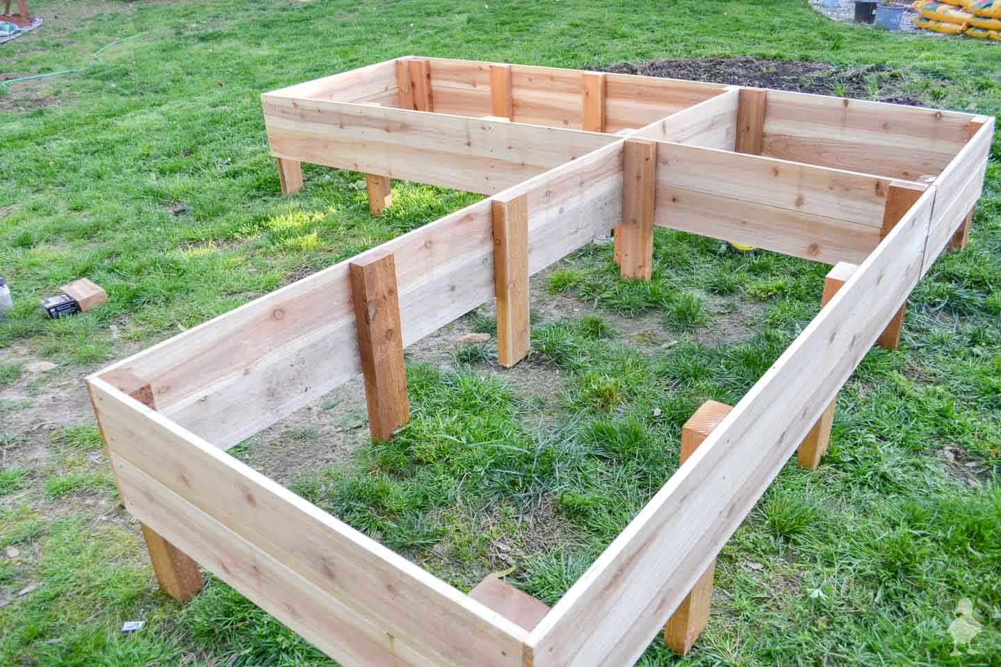 cedar raised garden beds before digging into the ground