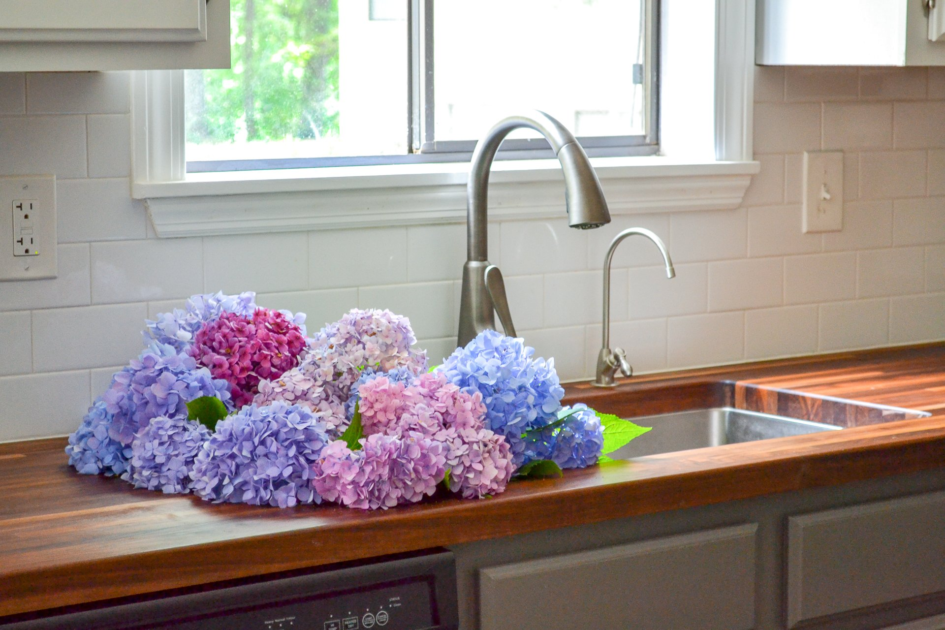 cluster of hydrangeas in sink