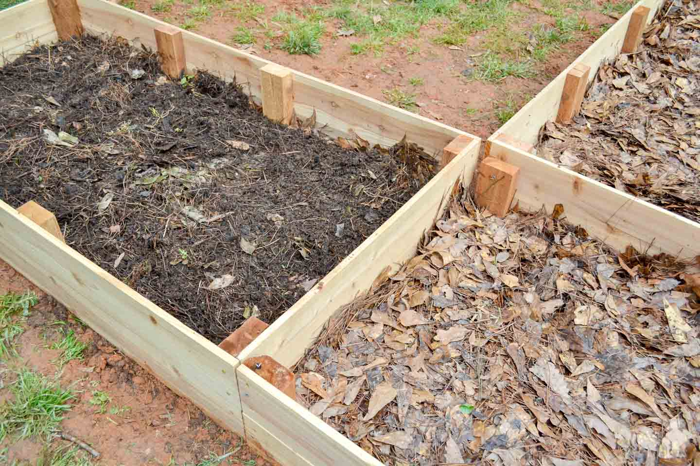 layering raised garden beds with leaves and fresh compost
