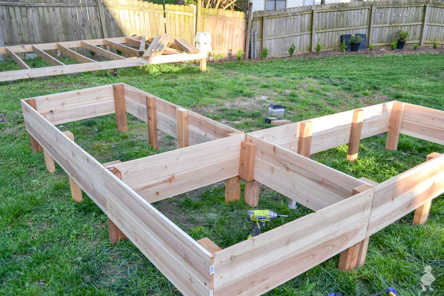 raised garden beds before digging into the ground - pub shed foundation in background
