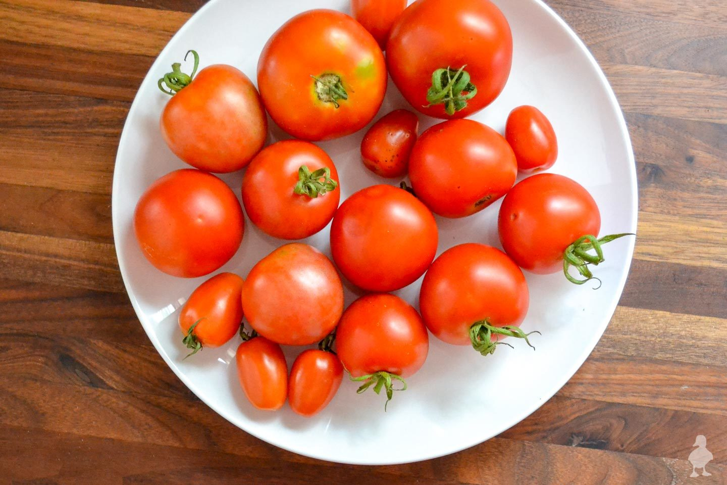 plate of fresh tomatoes