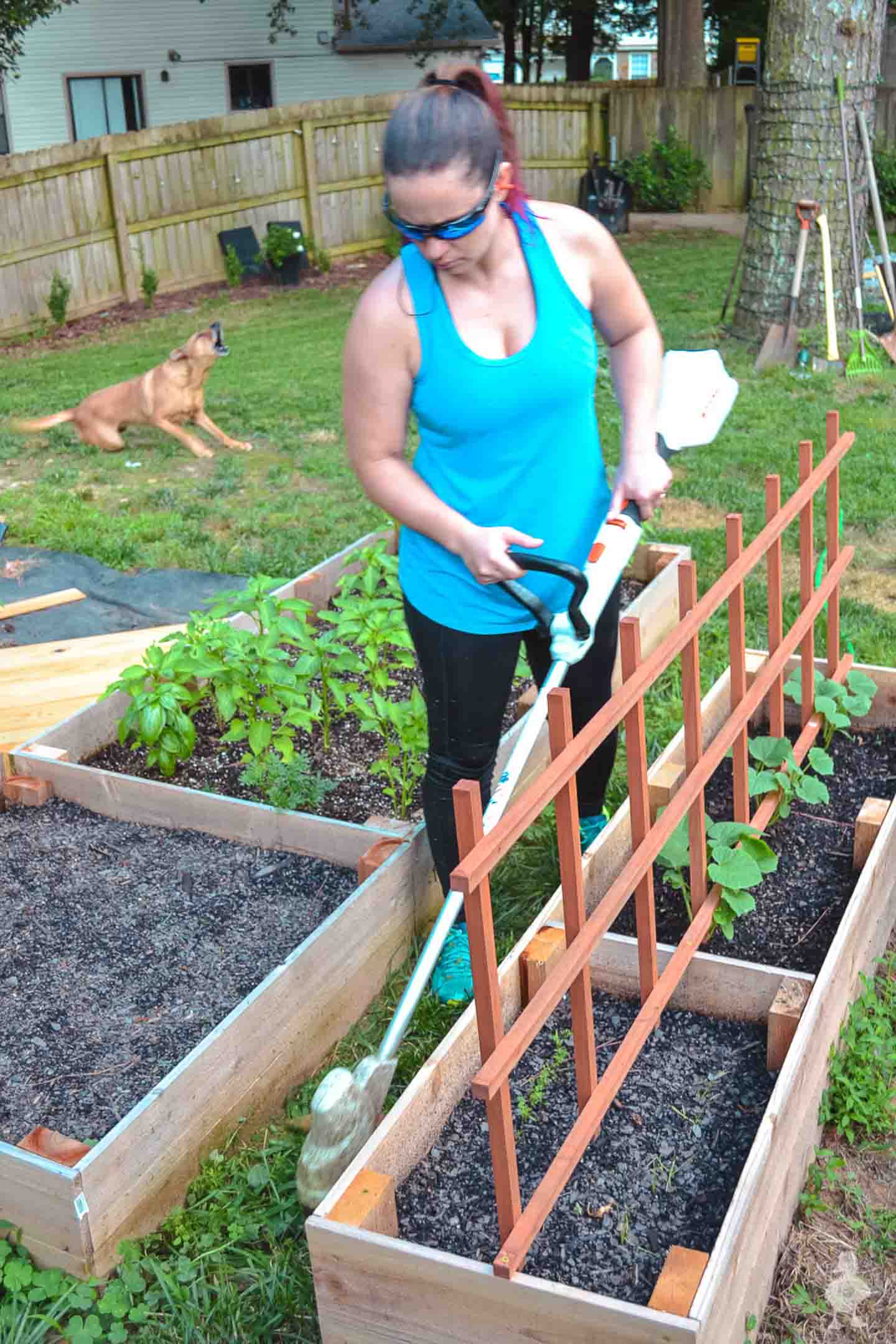 using STIHL trimmer around garden beds