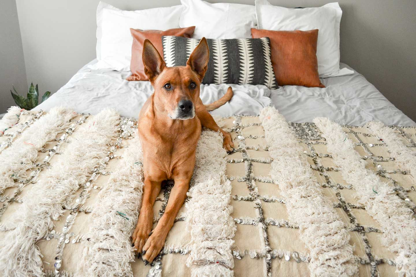 Charlie modeling master bedroom decor - moroccan wedding blanket and pillows