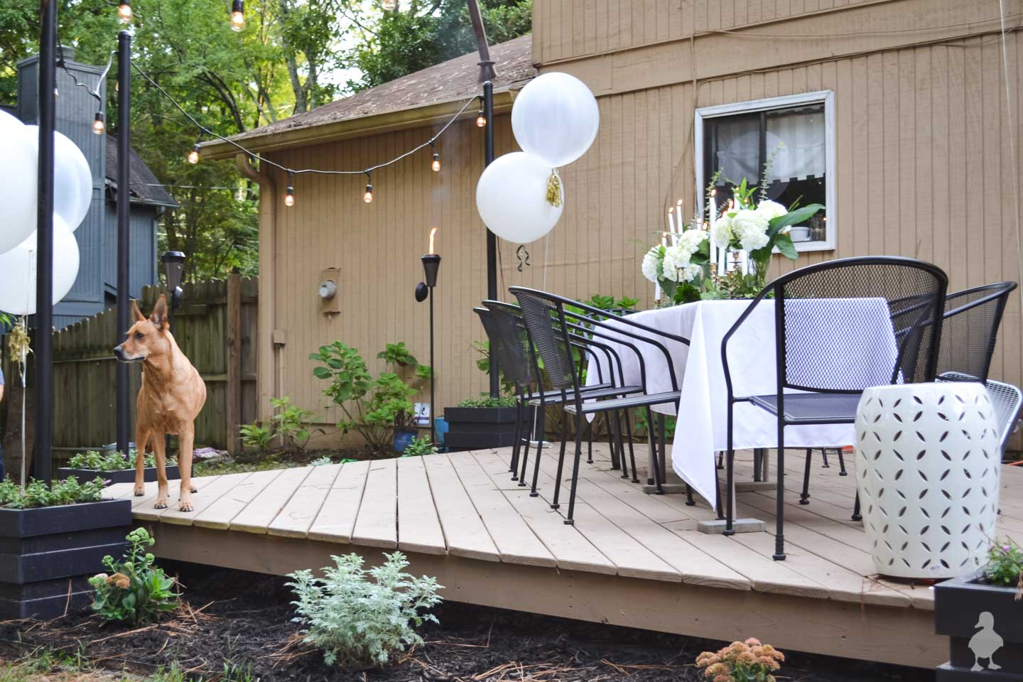 white table with black chairs on floating deck and dog