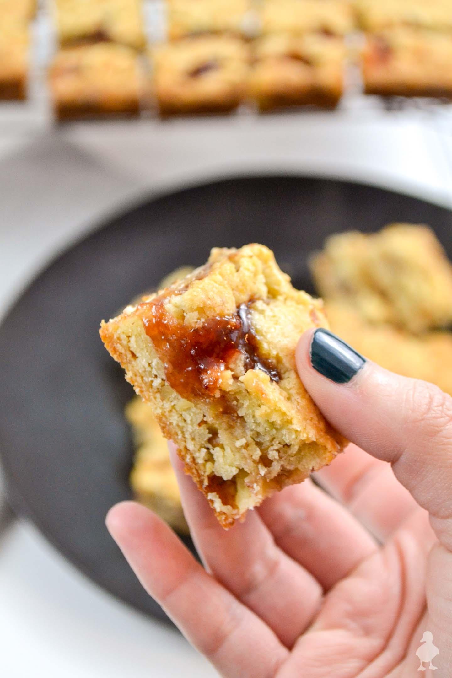 Czechoslovakian Cookies | Family Favorite Recipes