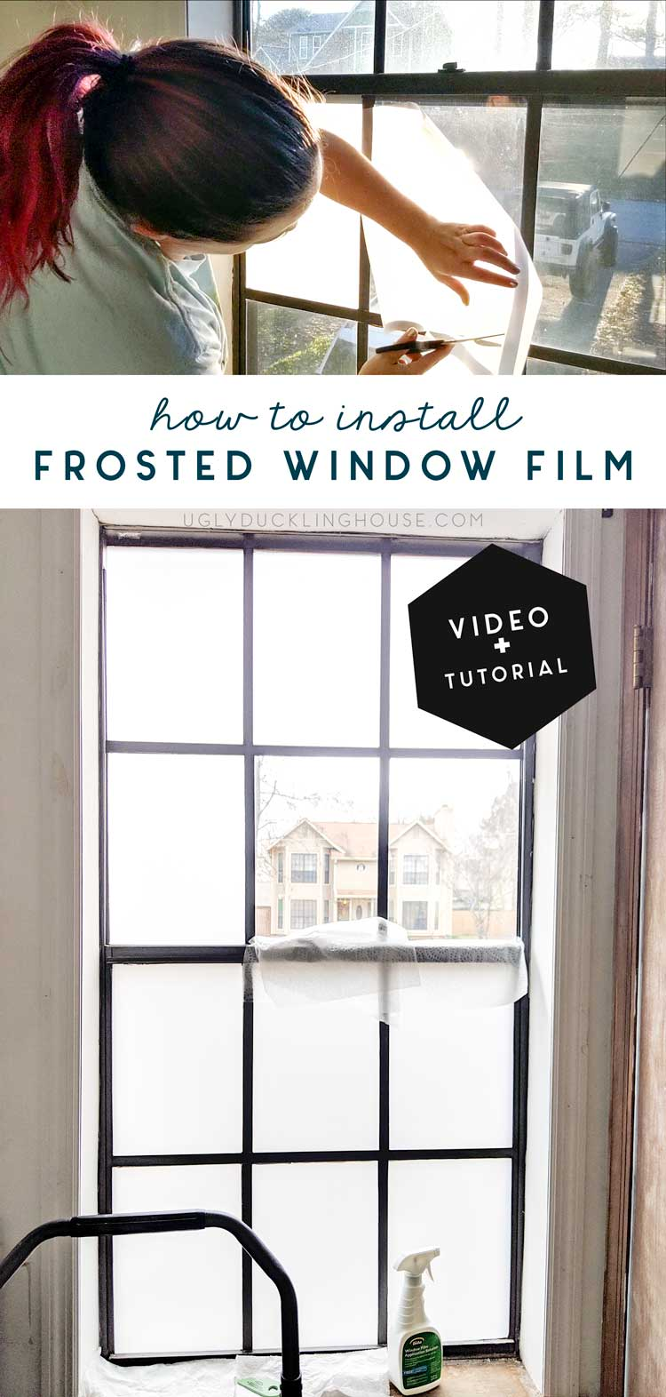 How I Installed Frosted Window Film — and Got the Dog to
