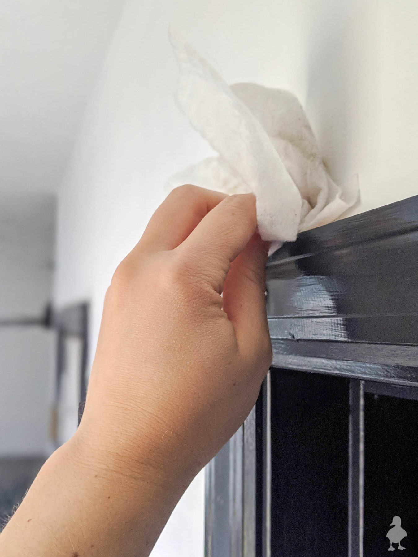 wipe down baseboards and door frame before painting with swiffer cloth