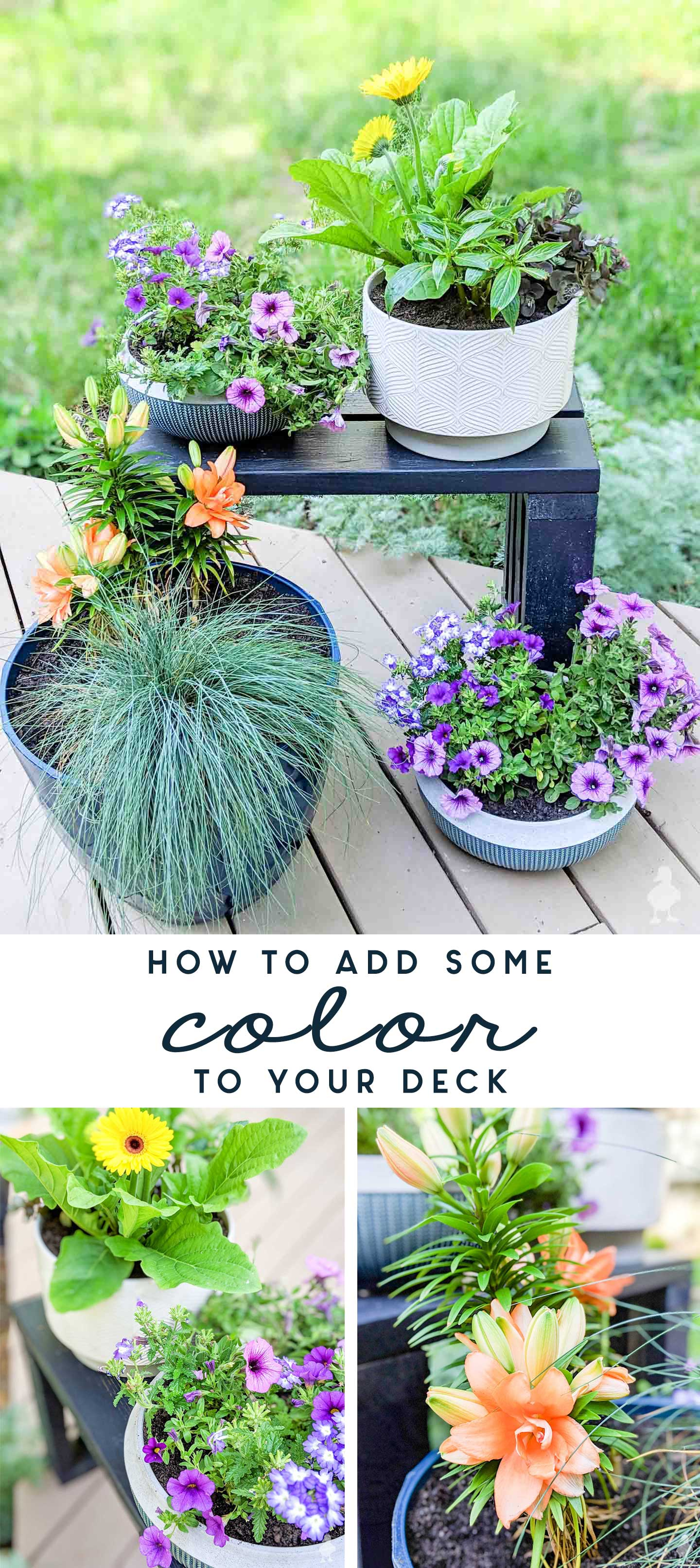 how to add some color to your deck
