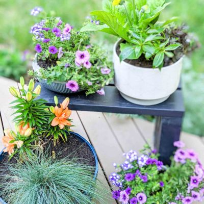 deck decorating with plants and colorful planters